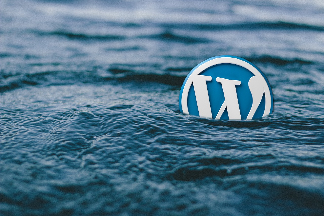 5 WordPress Plugins that Every Online Business Needs